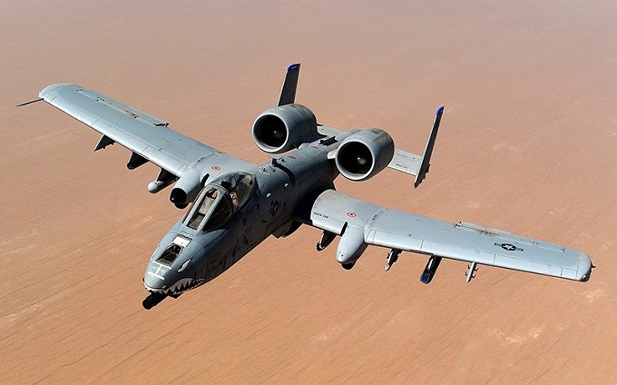 warthog-800.jpg