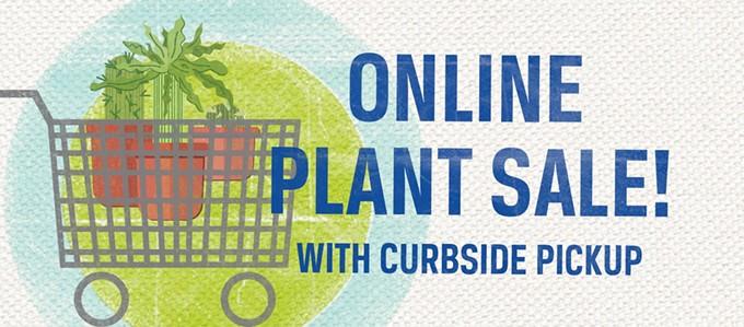 tohono_chul_online_plant_sale.jpg