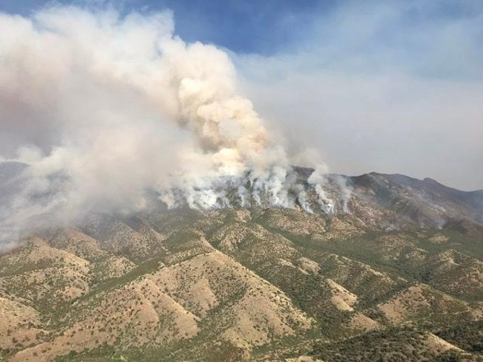 FIRING OPERATION ON ORACLE RIDGE, BY NATIONAL FOREST SERVICE