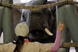 Reid Park zookeeper Monique Ortega working with Sundzu - LOGAN BURTCH-BUUS