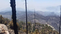 Bighorn Fire more than 50 percent contained