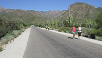 Sabino Canyon Re-Opening Today But No Tram or Visitor Center