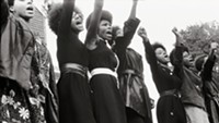 Black Panthers Film