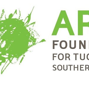 Arts Foundation for Southern Arizona Announces $50,000 in Emergency Arts Grants