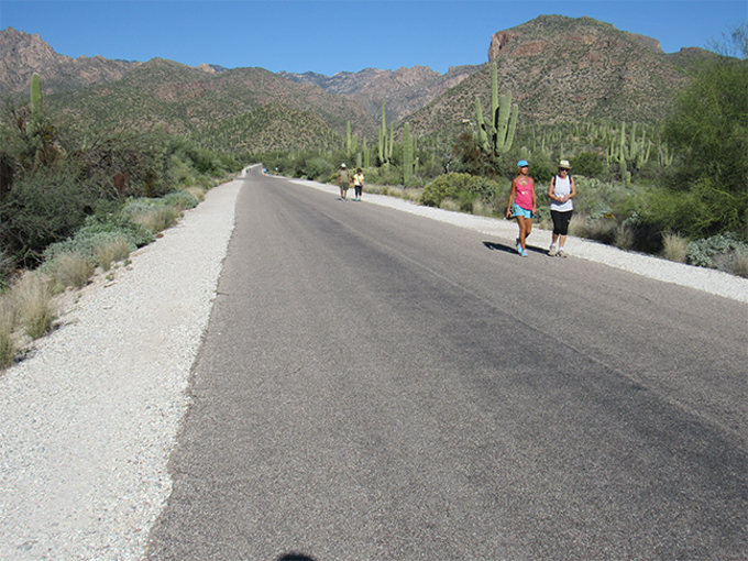 Residents and visitors have spent much of the year walking the paved road through Sabino Canyon after an appeal prevented the new operators of the tram service from implementing modernized vehicles and payment systems.