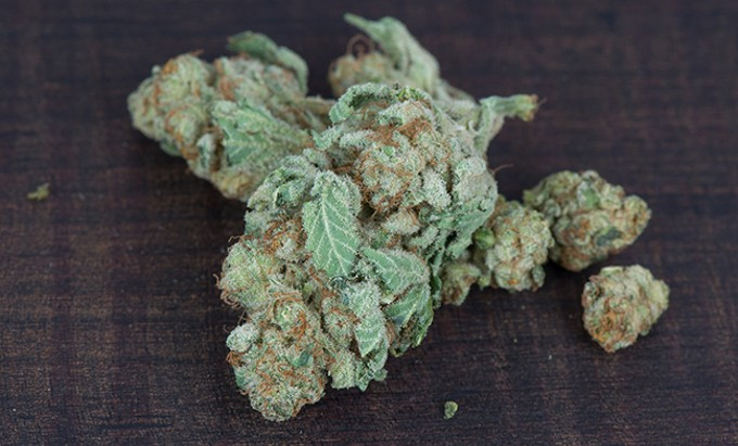 bigstock-blueberry-diesel-medical-marij-98472308.jpg