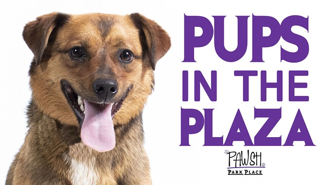 pups_in_the_plaza_fb_event_2019_2_.jpg