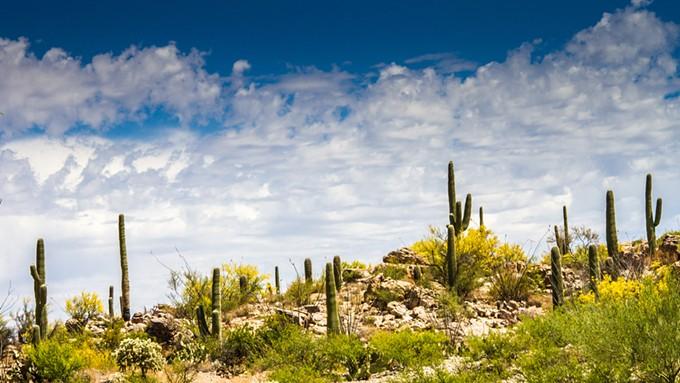 bigstock-desert-ridge-89576447.jpg