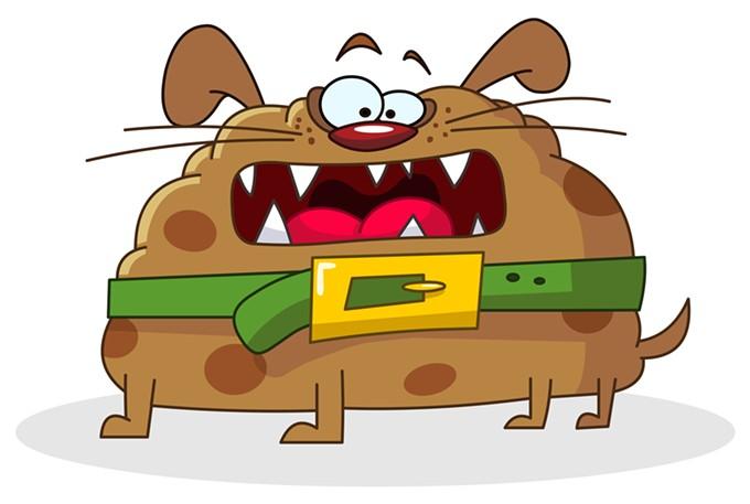 bigstock-funny-dog-21405977.jpg