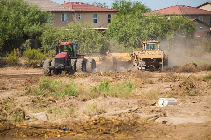 Construction workers dump sediment from the Rillito onto what was once the Columbus Weed Patch birding hot spot.