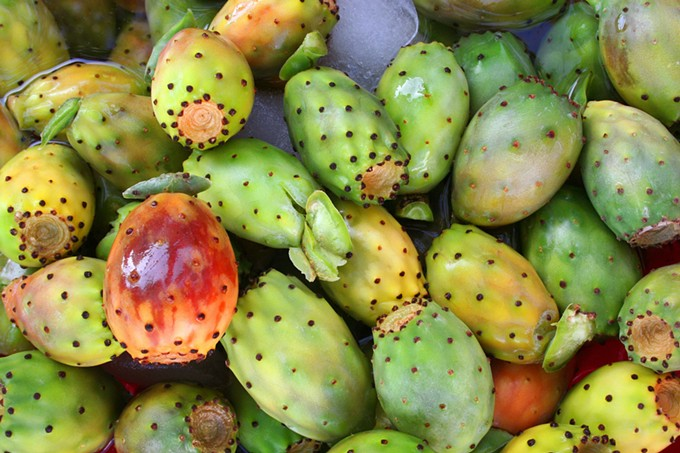 bigstock-tropical-cactus-fruits-3383548.jpg