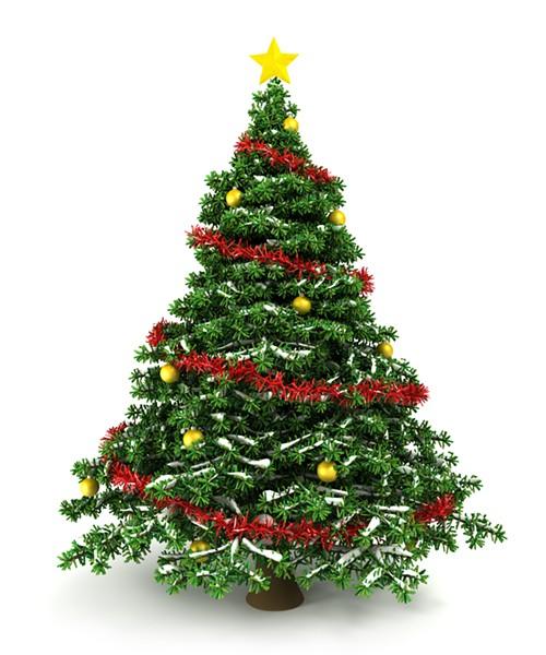 bigstock--d-christmas-tree-11958842.jpg