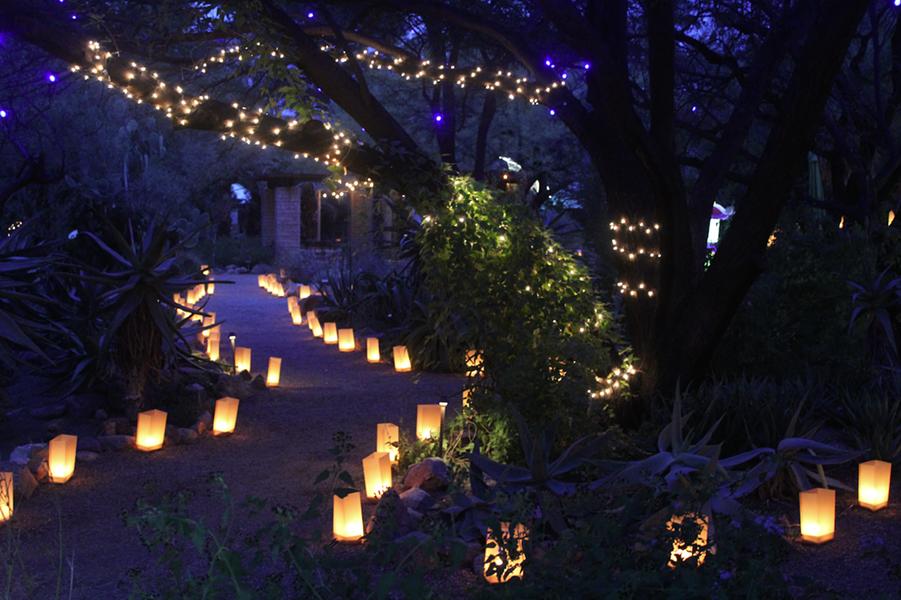 The Tucson Botanical Gardens during last winter's Luminaria Nights. - JEFF GARDNER