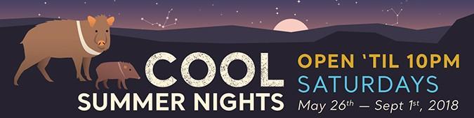 cool_summer_nights.jpg