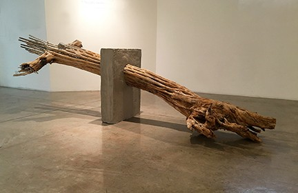 """Esthetic of Decay #11"" 2017-2018, found saguaro cactus skeleton, foam, wood, chicken wire, concrete, 34.5 x 118 x 49"" - OLIVIER DUBOIS-CHERRIER"