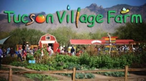 TUCSON VILLAGE FARM
