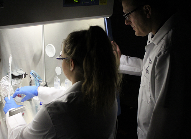 Mark Pincus directs a student at a biosafety cabinet.