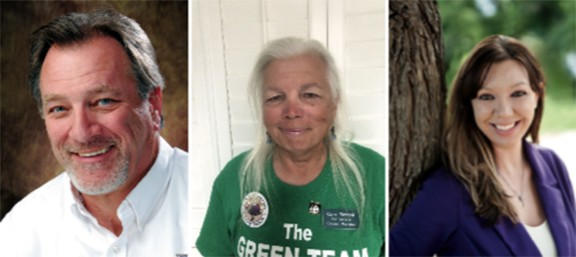 Republican Michael Hicks, Green Cara Bissell and Democrat Nikki Lee want to be your next city council member.