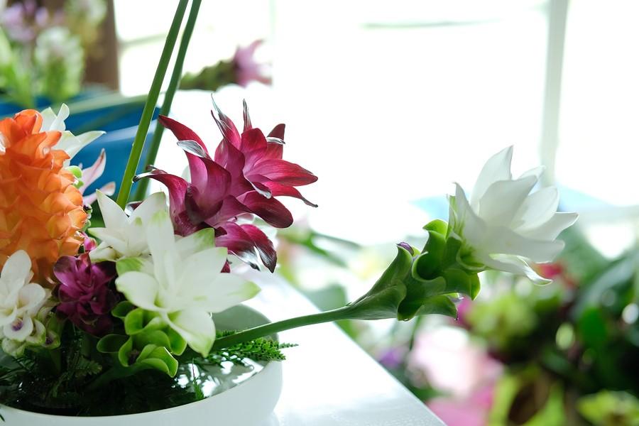 bigstock-siam-tulip-flower-arrangement--317543935.jpg