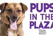 Pups in the Plaza