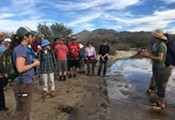 River Clean-Up at Shamrock Park along the Rillito River