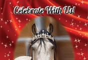 Equine Voices Rescue & Sanctuary: 15th Anniversary Celebration