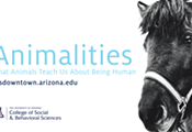 "UA Downtown Lecture: ""Łįį' (Navajo Horse) as Healer and Educator"""