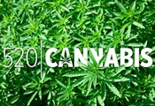 520 Cannabis: Legislative Update