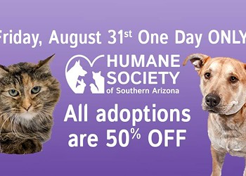 Humane Society of Southern Arizona Aims to Adopt Out 25 Pets on Friday