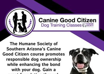 Humane Society of Southern Arizona's Canine Good Citizen Training