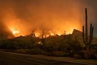 pna_wildfire_in_saguaro_land.jpg