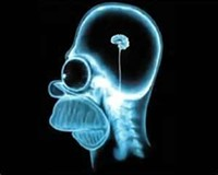 yuri_boyka_homer_simpson_brain_scan_70271_jpg-magnum.jpg